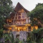 The Tree House 3