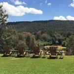 El Juguete Ranch 5