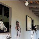 El Juguete Ranch 2