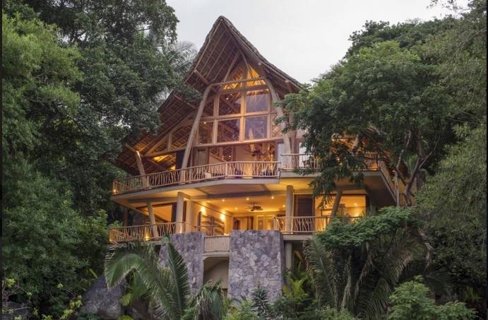 The Tree House 1