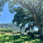 Rancho Ana 6
