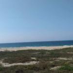 Bajos de Coyula/ 5 hectáreas /frente de playa 2