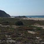 Bajos de Coyula/ 5 hectáreas /frente de playa 4