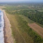 Vainilla Tonameca /desde 1 -100 hectareas/ Frente de playa 5