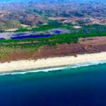 Vainilla Tonameca /desde 1 -100 hectareas/ Frente de playa 2