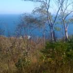 Boquilla / 4 Hectareas / Vista al mar 2