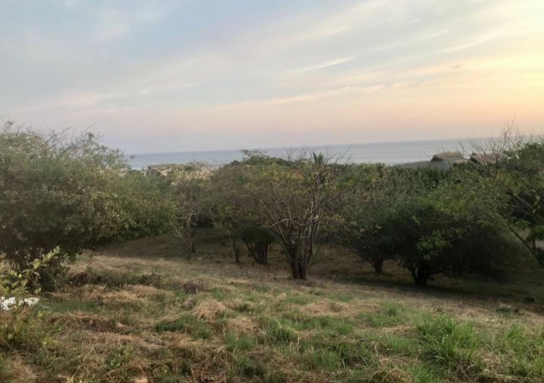 Lomas de la Barra / 5000 m2 / Vista al mar 1
