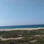 Bajos de Coyula/ 5 hectáreas /frente de playa 6