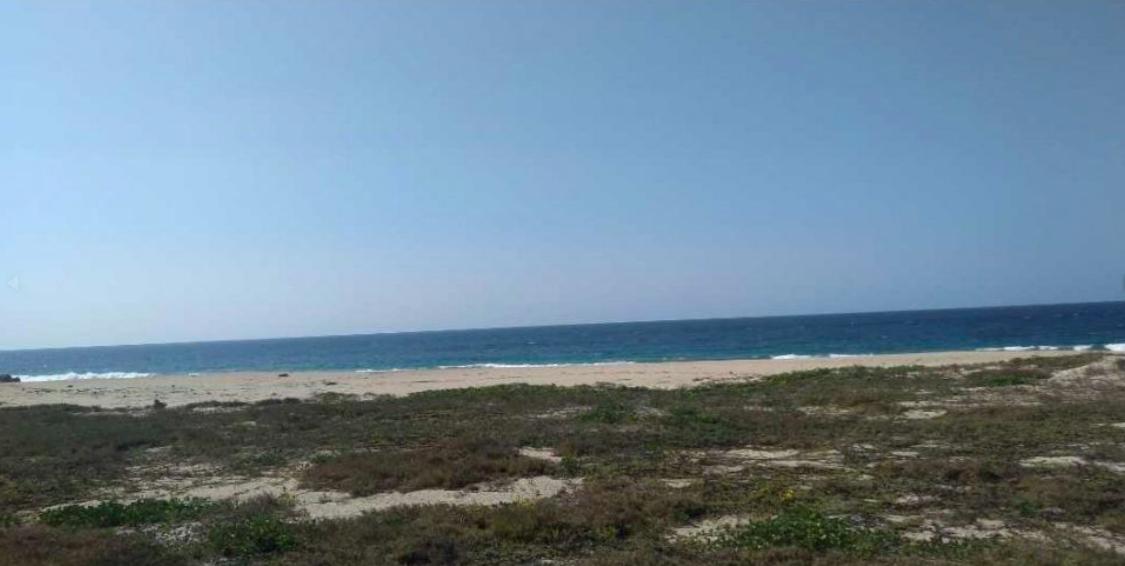 Bajos de Coyula/ 5 hectáreas /frente de playa 1