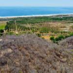 Recidencial el bosque /$1300m2/8 hectáreas / Varias medidas 2