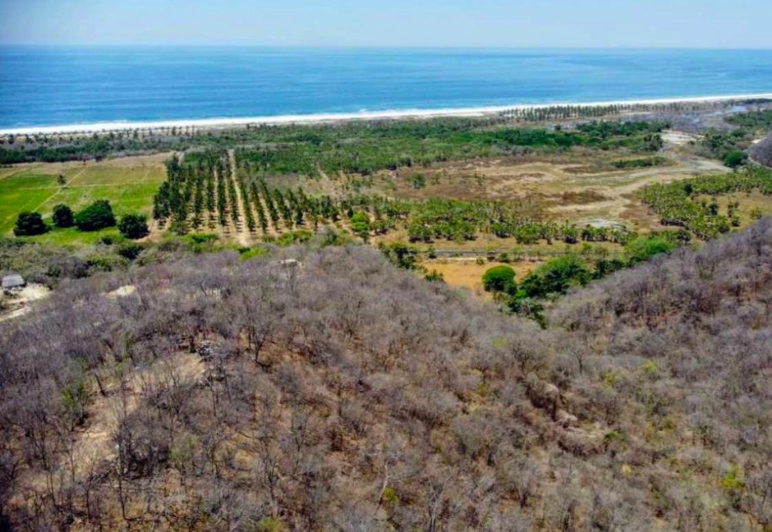 Recidencial el bosque /$1300m2/8 hectáreas / Varias medidas 1