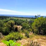 Recidencial el bosque /$1300m2/8 hectáreas / Varias medidas 8