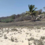 Playa agua blanca/Terreno de 2,400m2/Frente de playa/$3000 por m2 4