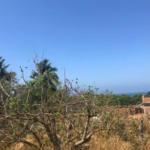Punta de Zicatela / 556 m2 / vista al mar / cerca de carretera 3