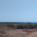 Plataforma/400 M²/Vista al océano pacífico 3