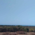 Plataforma/400 M²/Vista al océano pacífico 4