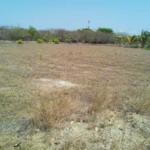 Barra de colotepec/17x35=595m2/zona de alta plusvalía 4