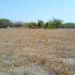 Barra de colotepec/17x35=595m2/zona de alta plusvalía 5