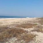 Playa Palmarito/ 1 Hectarea / Frente de Playa 2