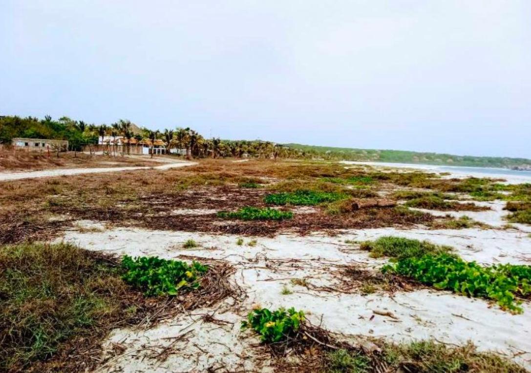 Punta zicatela/ Terreno de 5,394m2/ Frente de playa 1