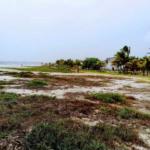 Punta zicatela/ Terreno de 5,394m2/ Frente de playa 7