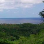 Hectáreas en Mazunte/40,000 m² 5