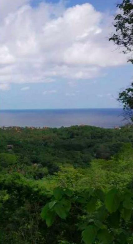 Hectáreas en Mazunte/40,000 m² 1