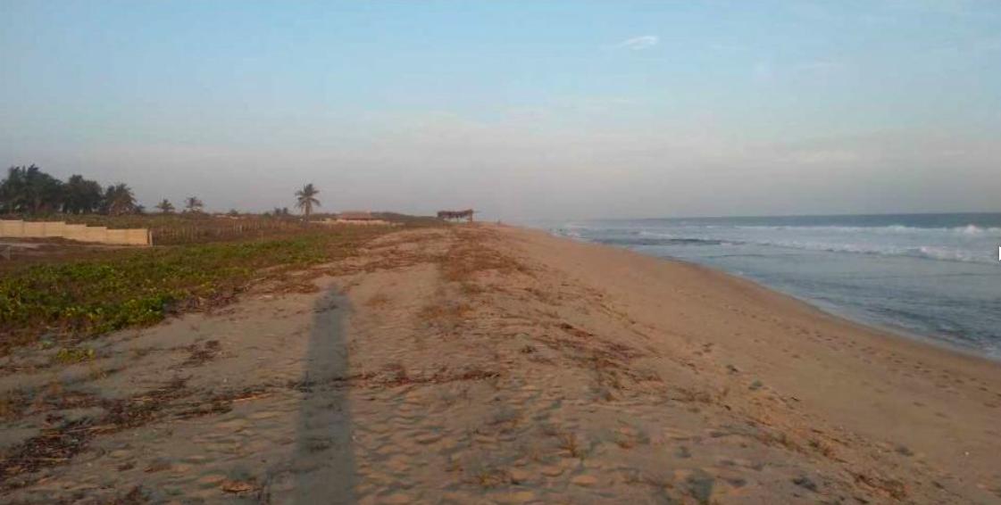 Santa Elena el Tule/Terreno de 14000 m²/Frente de playa 1