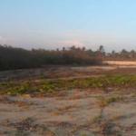 Santa Elena el Tule/Terreno de 14000 m²/Frente de playa 6