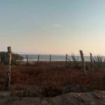 Santa Elena el Tule/Terreno de 14000 m²/Frente de playa 4