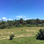 Cerro Hermoso / 90 hectareas / Frente de playa / Escritura 4
