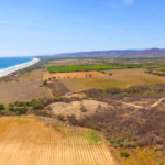 PLATFORM BEACH / Land of 200M2 / $ 250,000 / 100 meters from the beach 9