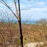 Barra de Colotepec/1345 M²/ Vista inigualable al mar 4