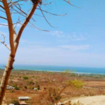 Barra de Colotepec/1345 M²/ Vista inigualable al mar 6