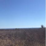 Tierra blanca / Lote 1000 m2/ 500 metros de la playa 4