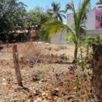Tamarindos / Terreno 375 m2 / 2 cuadras de la playa 6