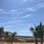 Punta de Zicatela / 1200 m2 / Beach Front 2