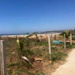 Punta Zicatela / 450 m2 / Beach Front 4