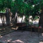 Tamarindos / Terreno 300 m2 con casa 2 rec / 200 m de la playa 4