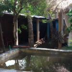 Tamarindos / Terreno 300 m2 con casa 2 rec / 200 m de la playa 5