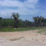 Tomatal / Terreno 1500 m2 / Frente a playa 3
