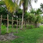 Tomatal / Terreno 1500 m2 / Frente a playa 4