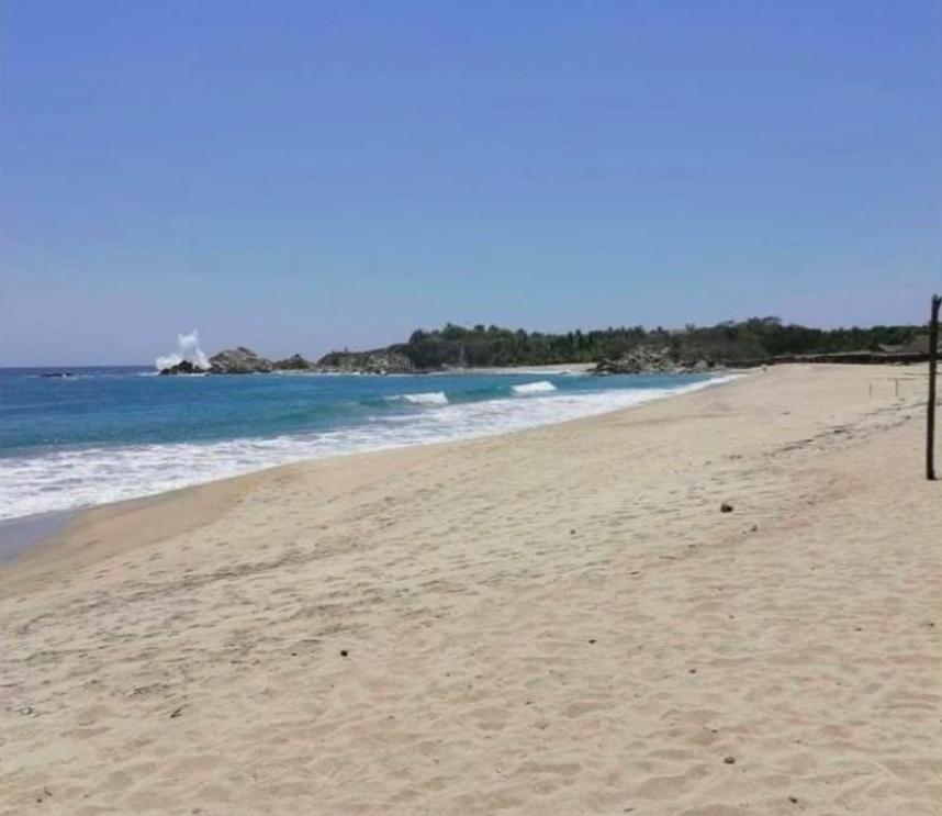 Roca blanca / terreno 504 m2 / frente de playa 1