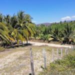 Roca blanca / terreno 504 m2 / frente de playa 7