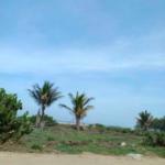 Playa Zicatela/300 m²/Frente de playa 3