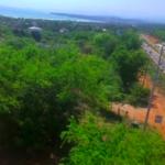 Punta de Zicatela / terreno 400 m2 / Junto a la carretera 4