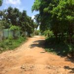 Punta de Zicatela / Terreno 500 m2/ Cerca de carretera 2
