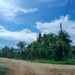 Punta de Zicatela / 1125 m2 / Acceso directo a la Playa 4