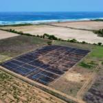 Tierra blanca / Lotes 200 - 250 m2 / a 500 m de la playa 3