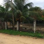 Punta de Zicatela / 300 m2 / a dos cuadras de la Playa 4